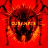 Cubanate - Brutalism (CD)1