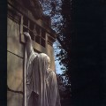 "Dead Can Dance - Within The Realm Of A Dying Sun / ReRelease (12"" Vinyl)1"
