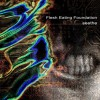 Flesh Eating Foundation - Seethe (CD)1