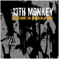 13th Monkey - Redefining The Paradigm Of Bang (CD)1