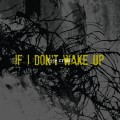 Life Cried - If I Don't Wake Up (CD)1
