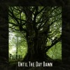 Pilori - Until The Day Dawn (CD)1