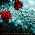 Sara Noxx feat. Mark Benecke - Where The Wild Roses Grow, Boy, Size L / Ultimate Fan Edition (Box)1