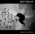 "Section 25 - Invicta Max / Limited Edition (10"" Vinyl)1"