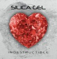 Silica Gel - Indestructible (CD)1