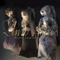 Unto Ashes - Pretty Haunted Things (CD)1