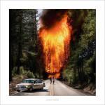 Ladytron - Ladytron (CD)