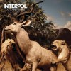 Interpol - Our Love To Admire (10th Anniversary) (CD + DVD)1