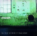 Mesh - The Point At Which It Falls Apart / Swedish Edition (CD)1