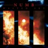 "Numb - Wasted / Limited Edition (12"" Vinyl)1"